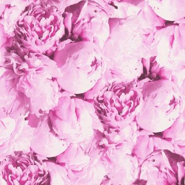 Papel Pintado Floral - SUNDOK 893731   MURAKE - 893731