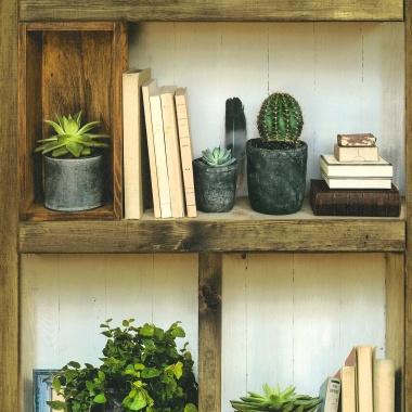 Papel Pintado Librería - CASILDA  | MURAKE - 964631