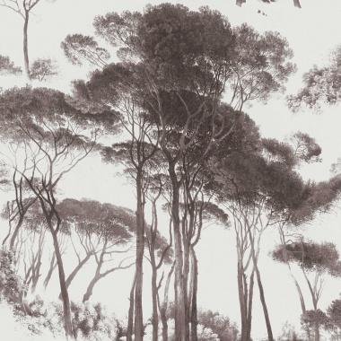 Papel Pintado Acacia Africana - EXETER 01   MURAKE - 56731