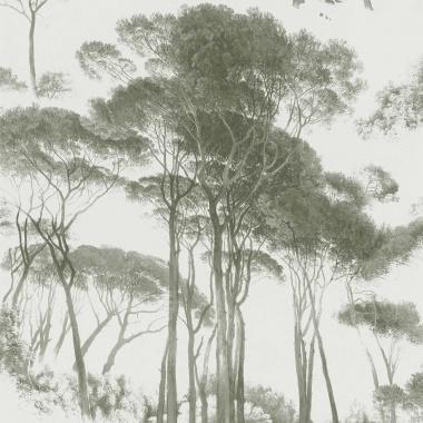 Papel Pintado Acacia Africana - EXETER 02 | MURAKE - 56732