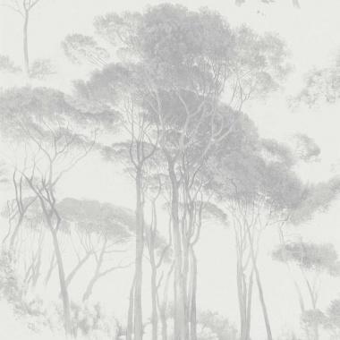 Papel Pintado Acacia Africana - EXETER 03   MURAKE - 56733