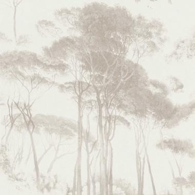 Papel Pintado Acacia Africana - EXETER 04   MURAKE - 56734