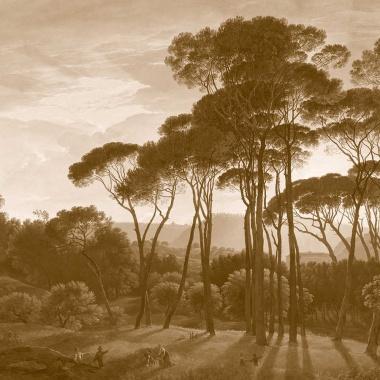 Papel Pintado Bosque Africano - MASJID 811819 | MURAKE - 811819