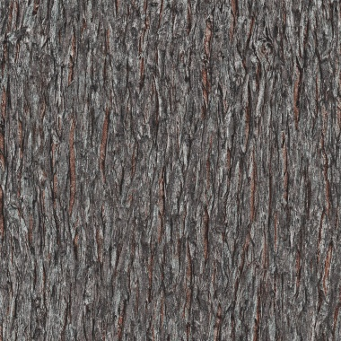 Papel Pintado Corteza - GUSTAVIA 01 | MURAKE - 211010