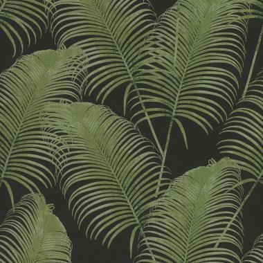 Papel Pintado Hoja de Palmera - AMOLA 04   MURAKE - KR404