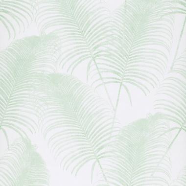 Papel Pintado Hoja de Palmera - AMOLA 06   MURAKE - KR407