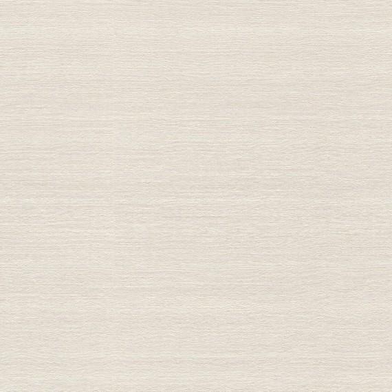 Papel Pintado TELARAÑA M528D879 - 1