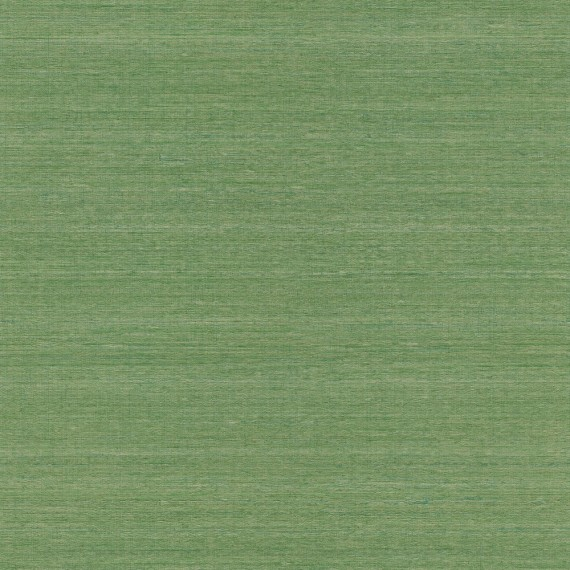Papel Pintado TELARAÑA M528D862 - 2