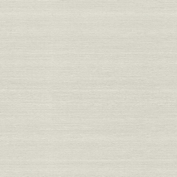 Papel Pintado TELARAÑA M528D848 - 1