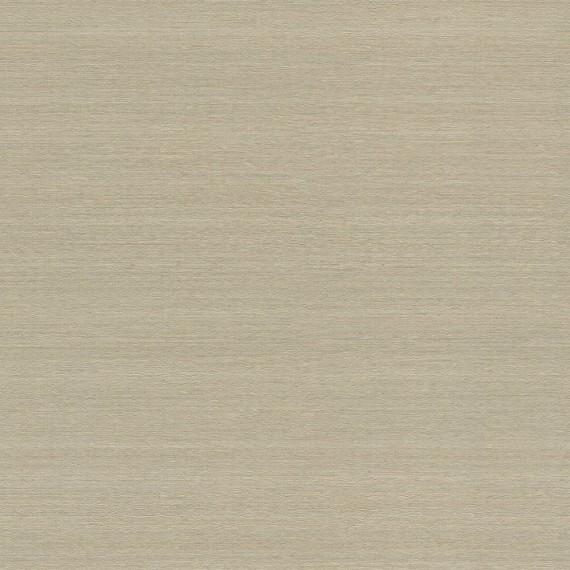 Papel Pintado TELARAÑA M528D824 - 2