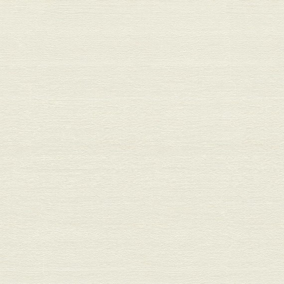 Papel Pintado TELARAÑA M528D800 - 1