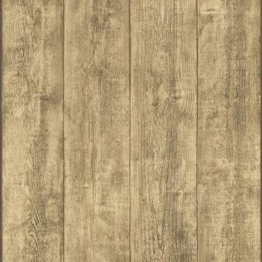 Papel pintado - DINSOOR 01 - 188076