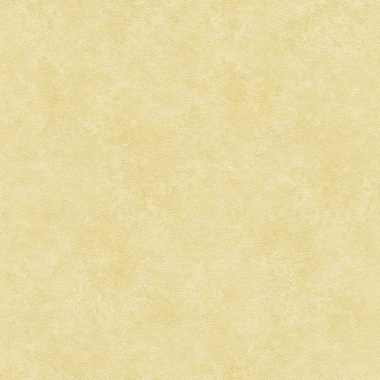 Papel pintado - TIBANERO 03 - 764733