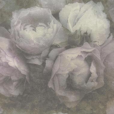Papel pintado - CLAUDE 01 - 293731