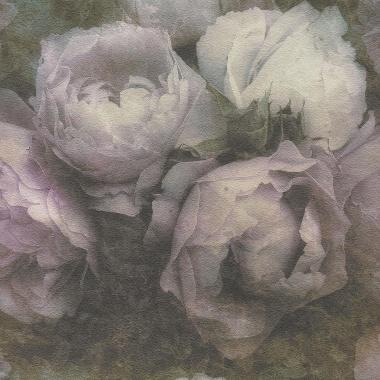 Papel pintado - CLAUDE 02 - 293732